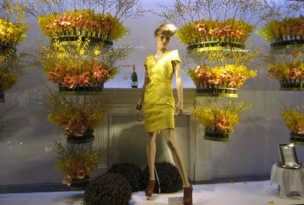 Window Display - David Jones