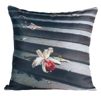 Lost Orchid Cushion