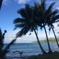 Driving from Apia